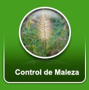 control_maleza